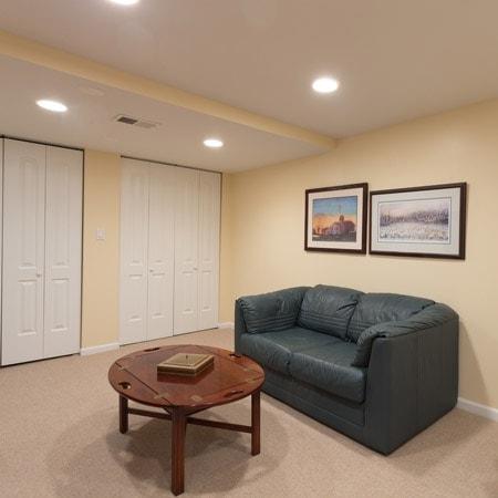 round-lake-basement-renovation