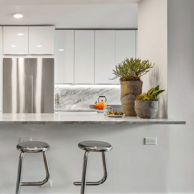 Chicago Modern Condo Living Remodel