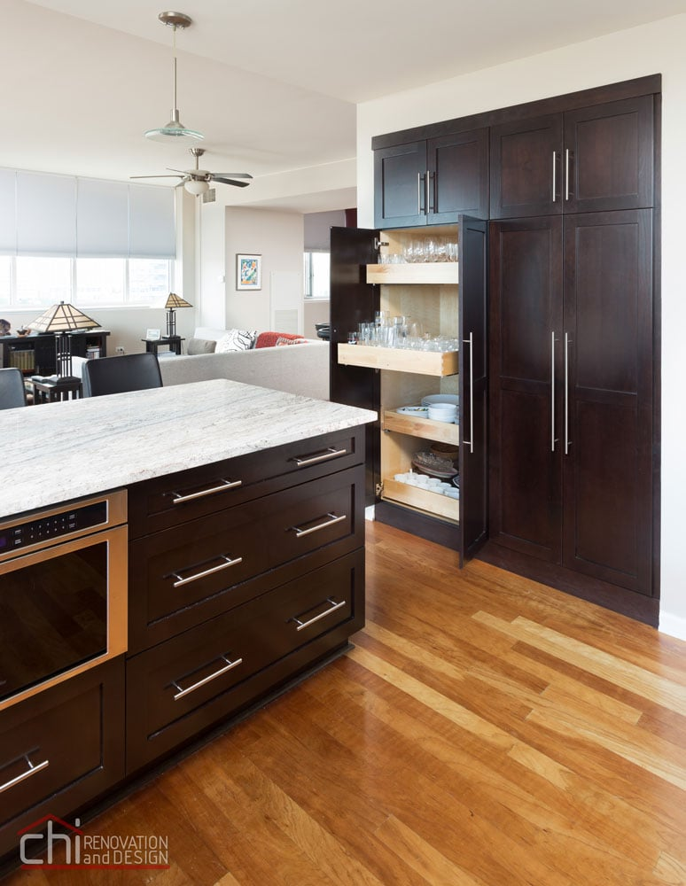 South Loop Chicago Kitchen General Contractors