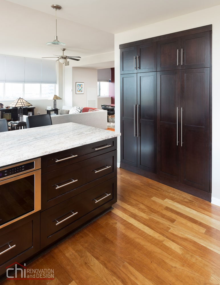 South Loop Chicago Kitchen Remodeling