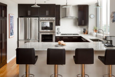 Chicago South Loop Kitchen Remodel