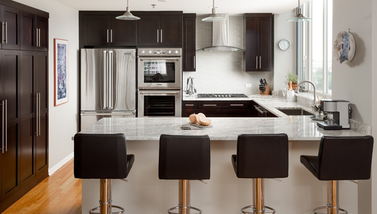 Chi | Chicago South Loop Kitchen Remodel